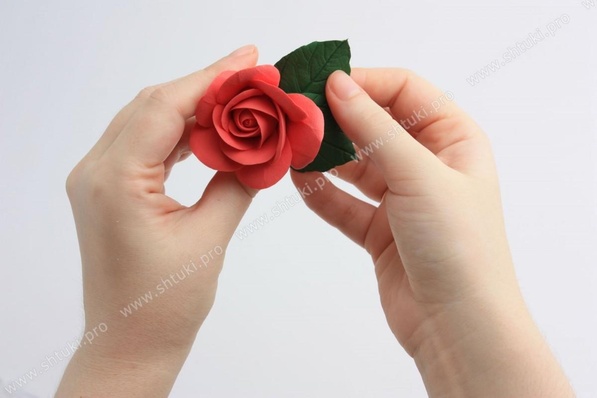Пробное занятие по лепке «Роза»